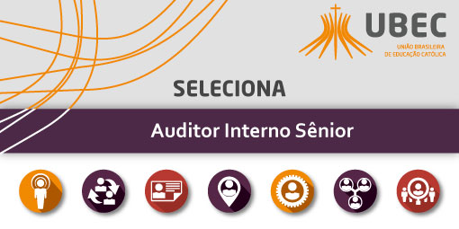 slide_auditor_interno_senior