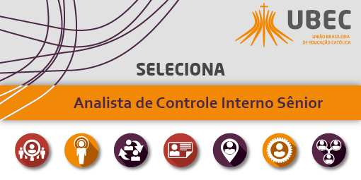 slide_analista_de_controle_interno_senior