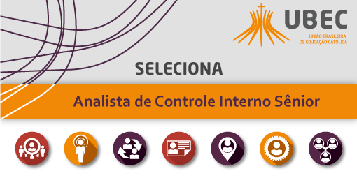 slide_analista_de_controle_interno_senior_02